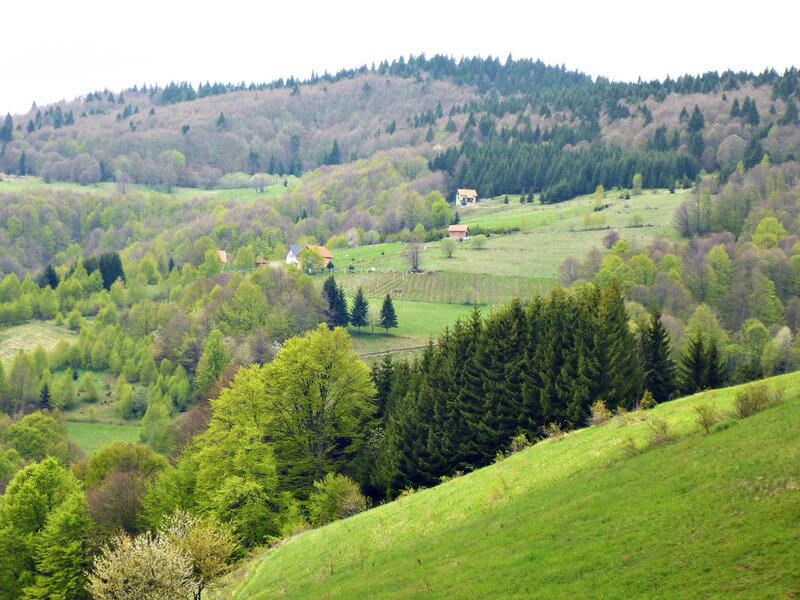 красивый пейзаж в горах сербии