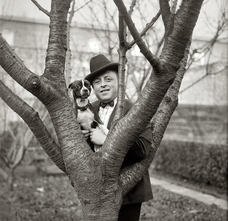 портрет с собакой.1920