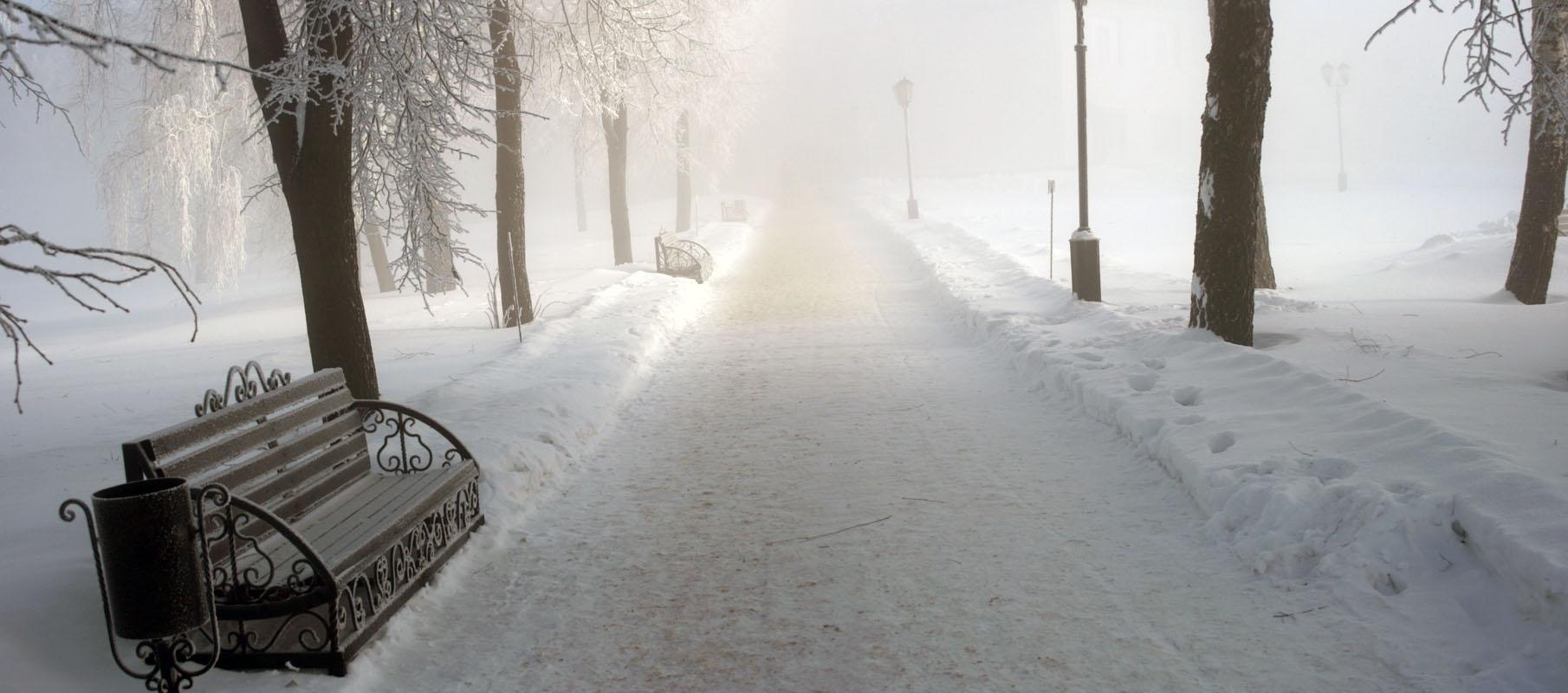 аллея, зима, иней, мороз, скамейка, туман,  утро