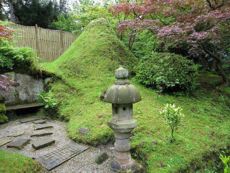 Хвойные композиции в саду фото