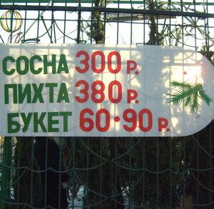 Цена ёлочки в Омске