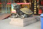 дракон черепаха
