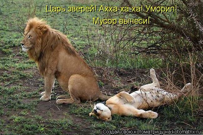http://img-fotki.yandex.ru/get/4008/yes06.a4/0_1cfb4_939d13b7_XL.jpg