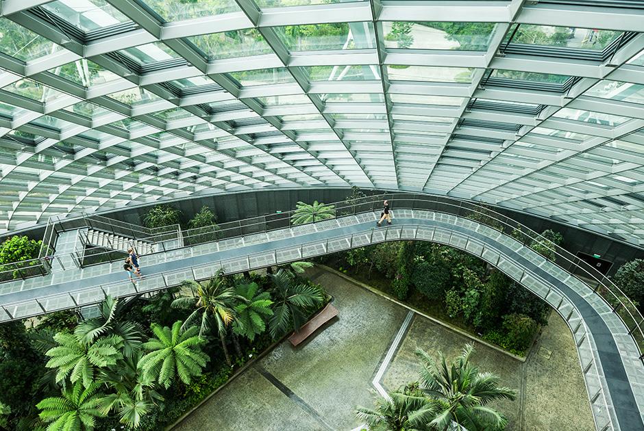 Сингапур: как живется в стране, признанной лучшей для иностранцев 0 145d77 14981951 orig