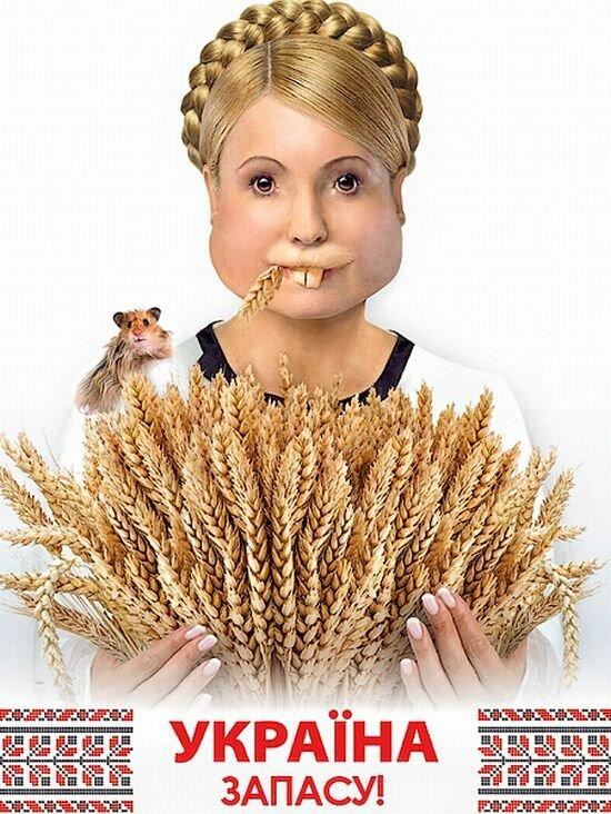 Фотожабы на Юлию Тимошенко