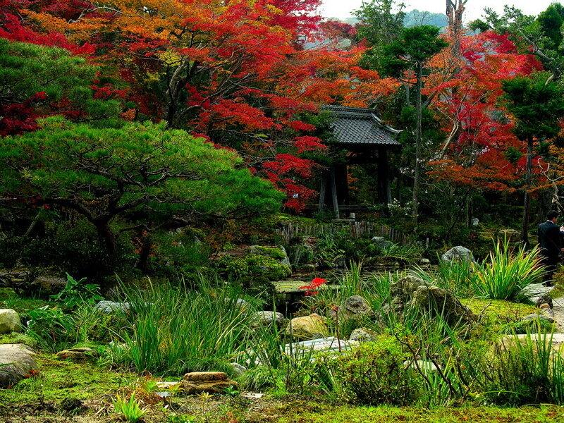 Японский сад - явление во всех