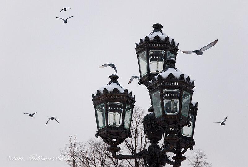 В Екатерининском сквере