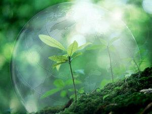 Экологи РМ бьют тревогу из-за состояния окружающей среды