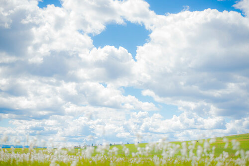 Поле облаков