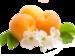 Персики.png