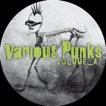 v.a. - Various Punks Vol_A (2007)