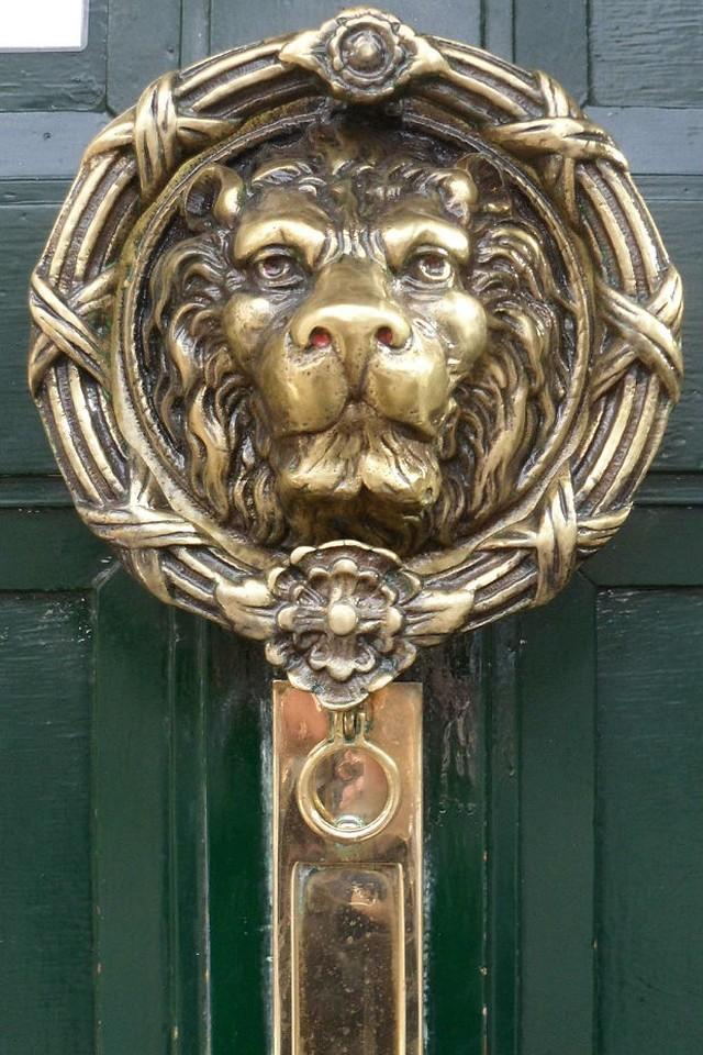 3. Лев Дверная ручка, украшенная изображением величественного льва.