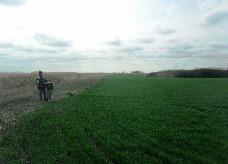 У поля весеннего, с велосипедом .... SAM_5893.JPG