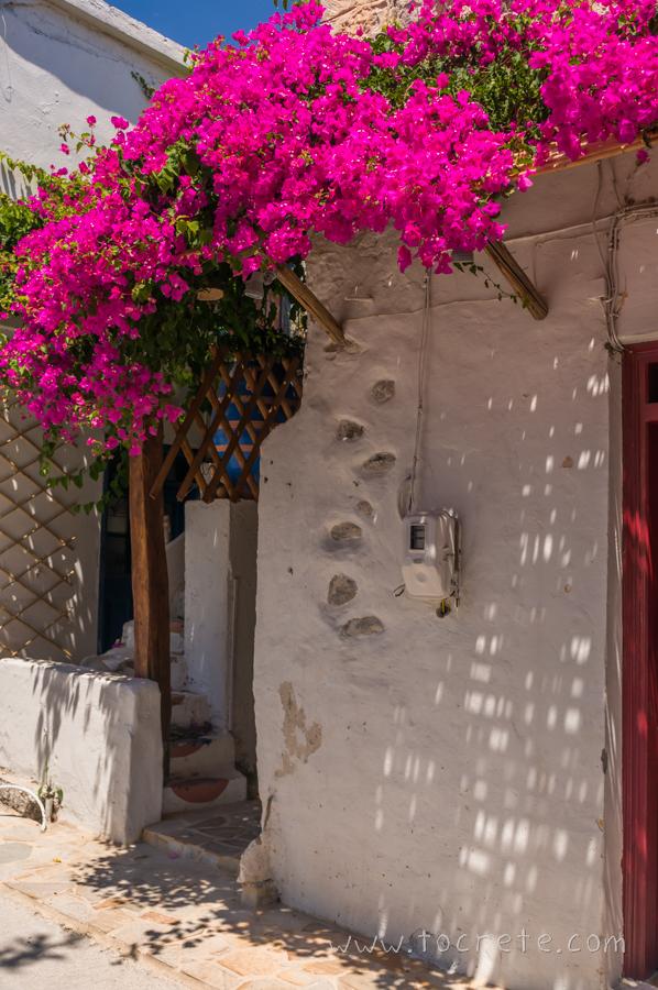 Миртос | Myrtos