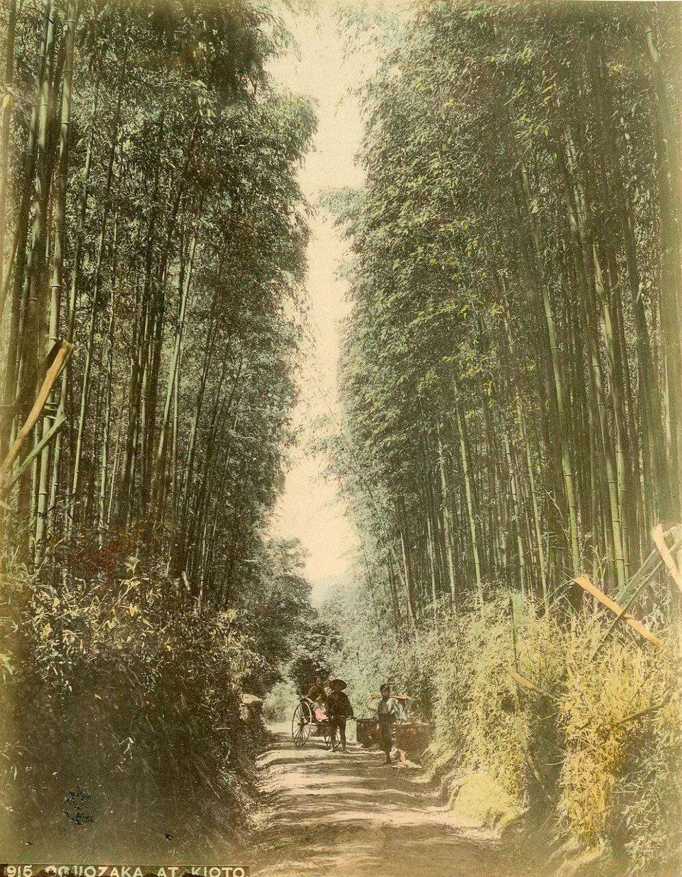 На дороге в Киото