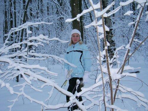 В лесу под Новый год
