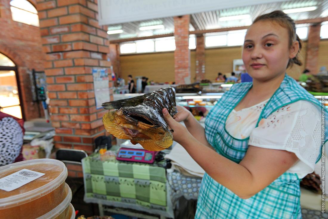 сом на рыбном рынке фото