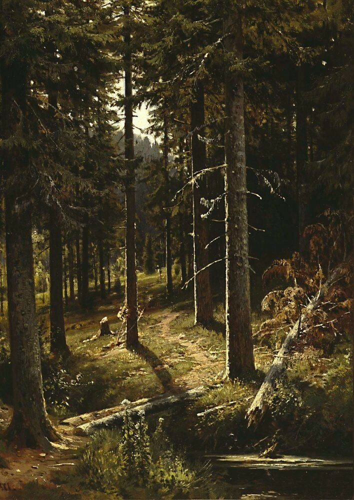 Лесной пейзаж1889-1890 51.2х36,9.jpg