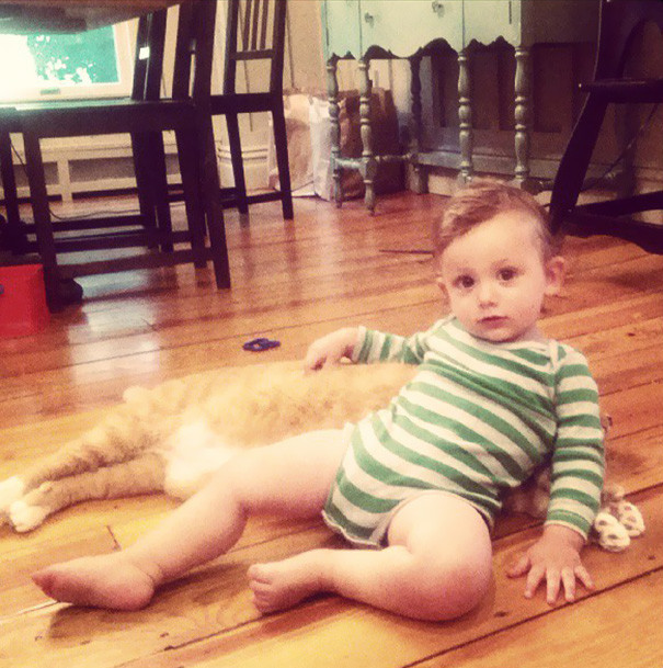 кот лучший друг мальчика
