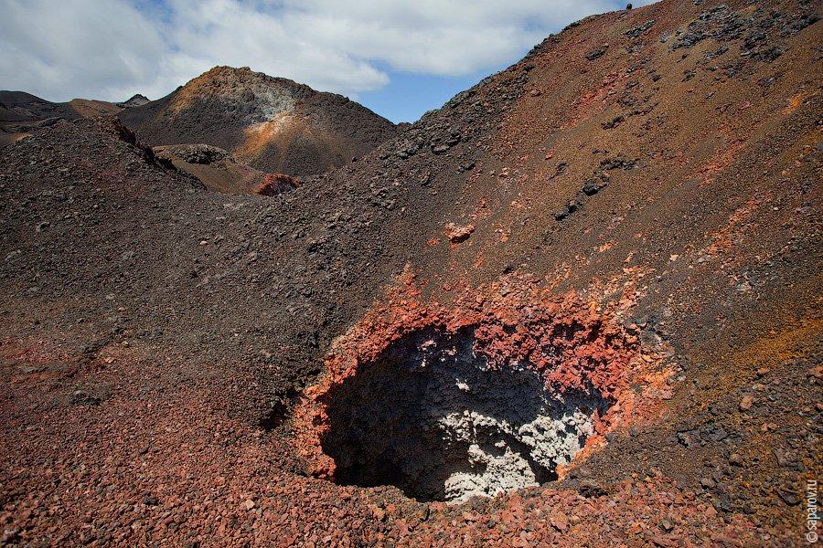 Вулканический остров Tintoreras    Крохотный вулканический островок, полностью