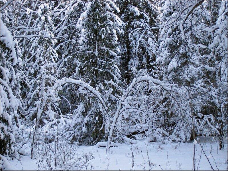 Две снежные арки