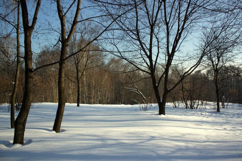 Зимний полосатый пейзаж