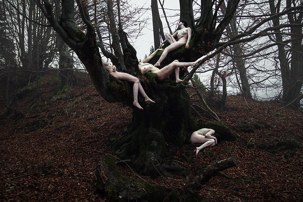 Мрачные образы на снимках Elena Helfrecht