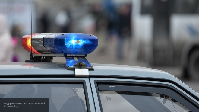 Возникла информация, зачто задержали малолетнего ребенка в столицеРФ