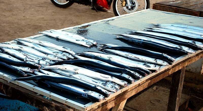 Рыбный рынок на о.Сумба