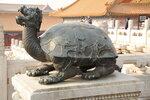 дракочерепаха