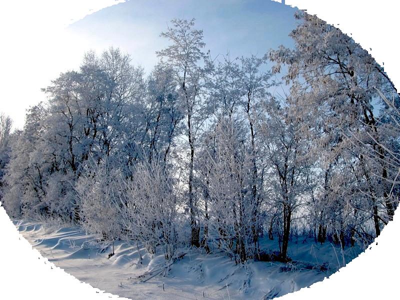 картинки на тему зима прозрачные