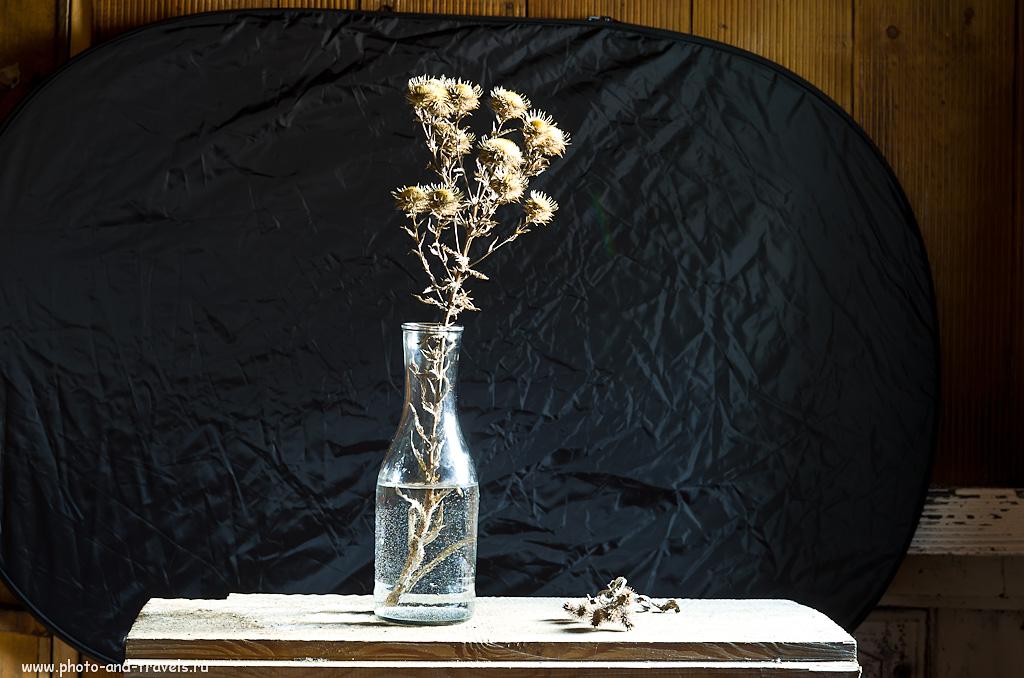 3. Простыня подсветила цветы... И фон заодно... Матричный замер. Учимся фотографировать цветы на черном фоне. Камера Nikon D5100.