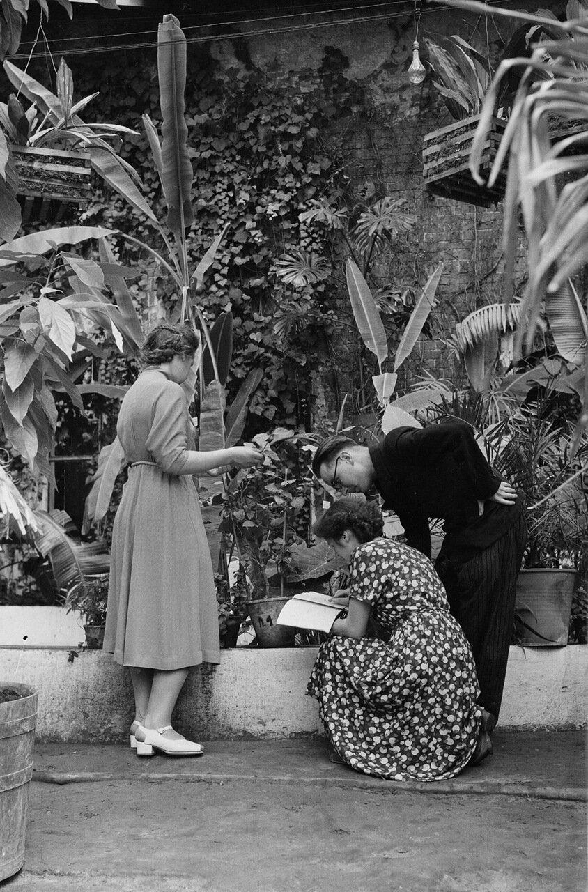 Студенты на практике в Ботаническом саду