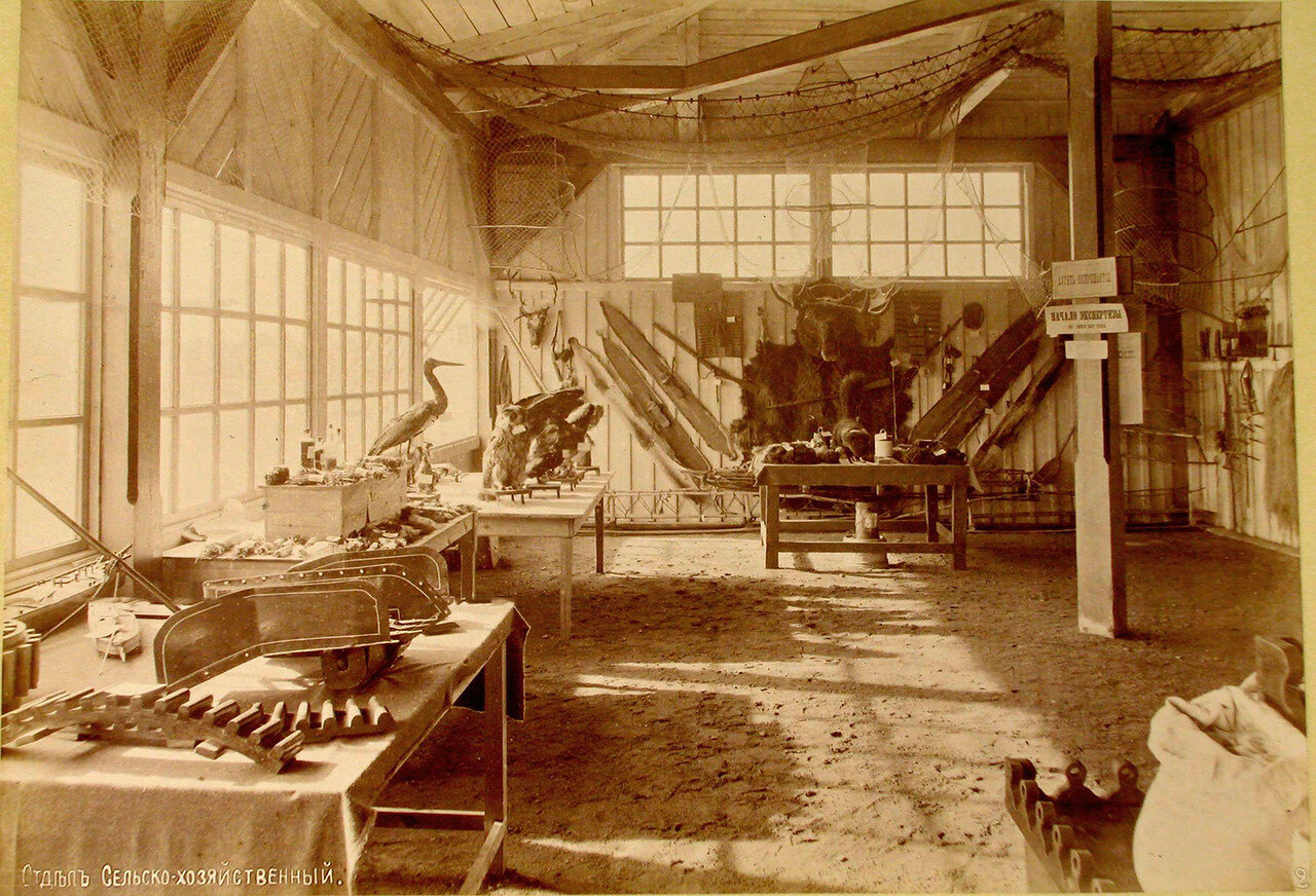 91. Вид части одного из залов с экспонатами в сельскохозяйственном отделе выставки