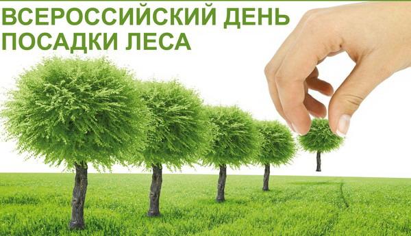 Всероссийский день посадки лесов