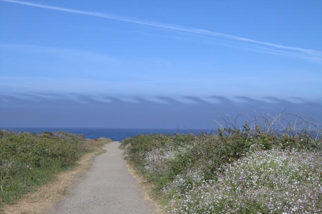 © Brendan Riley/flickr  Механизм образования таких облаков, которые еще называют облачными зав