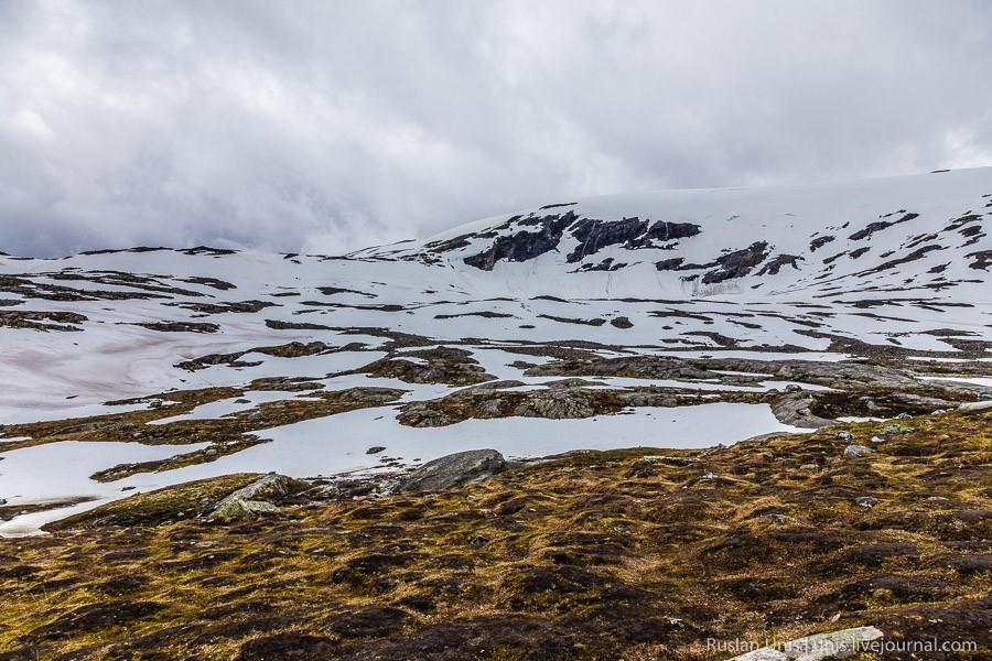 9. А вокруг атрибуты суровой северной природы.