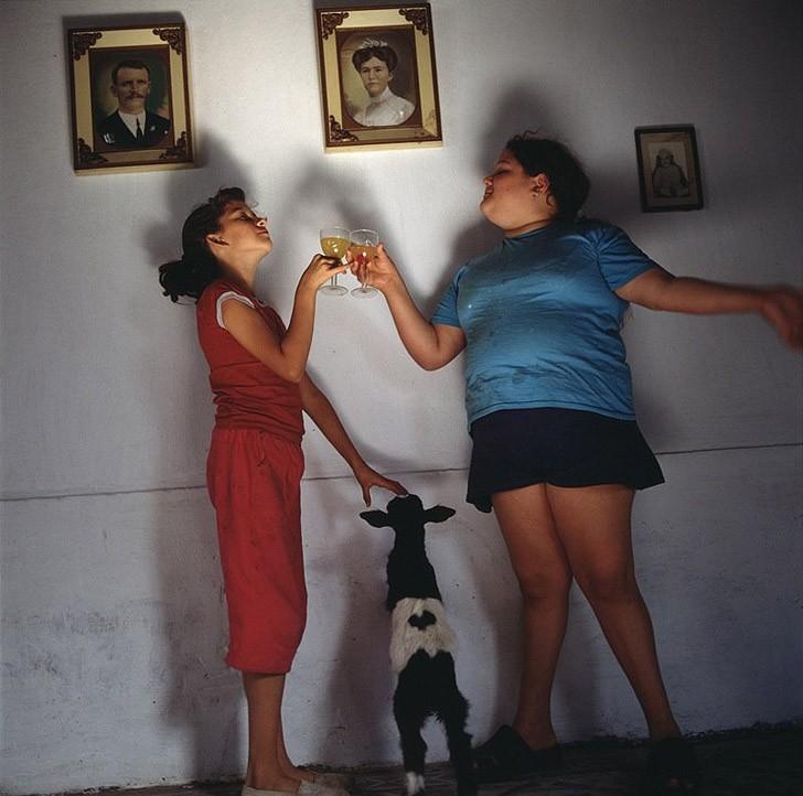 19. Напиток, 2001