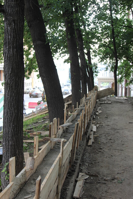 Повреждение деревьев Телешовского сада. 12.07.2017