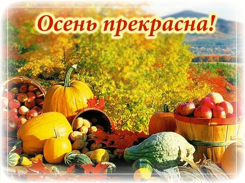 Открытки. Осень прекрасна! Дары осени открытки фото рисунки картинки поздравления