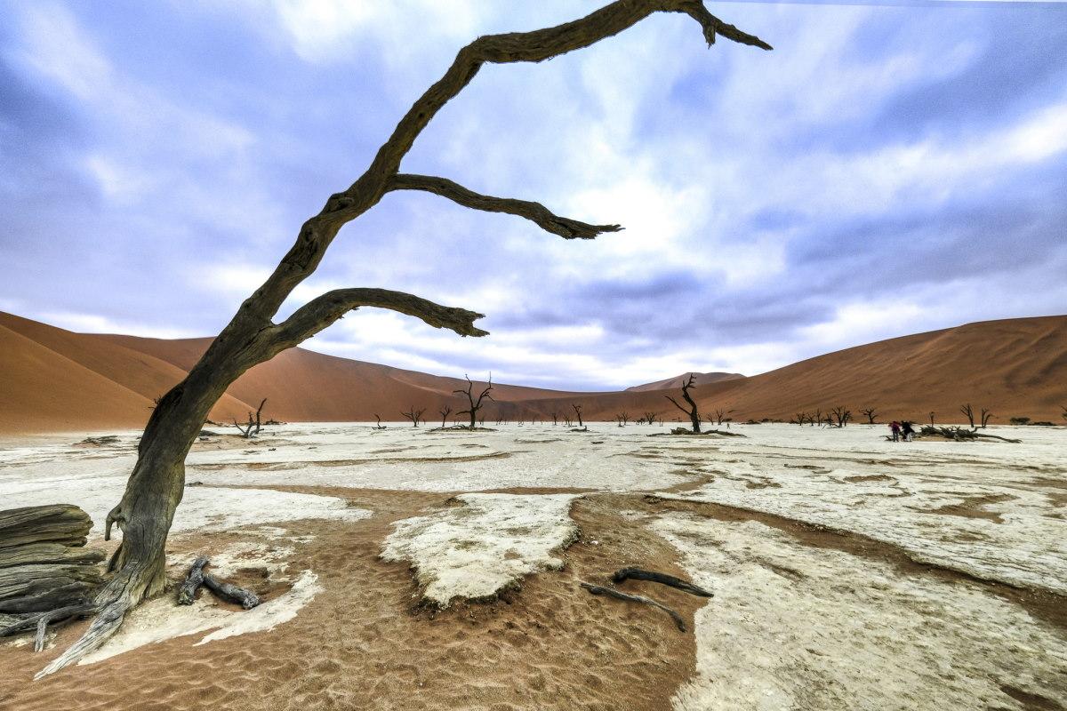 высохшее озеро было заменено пластинами глины