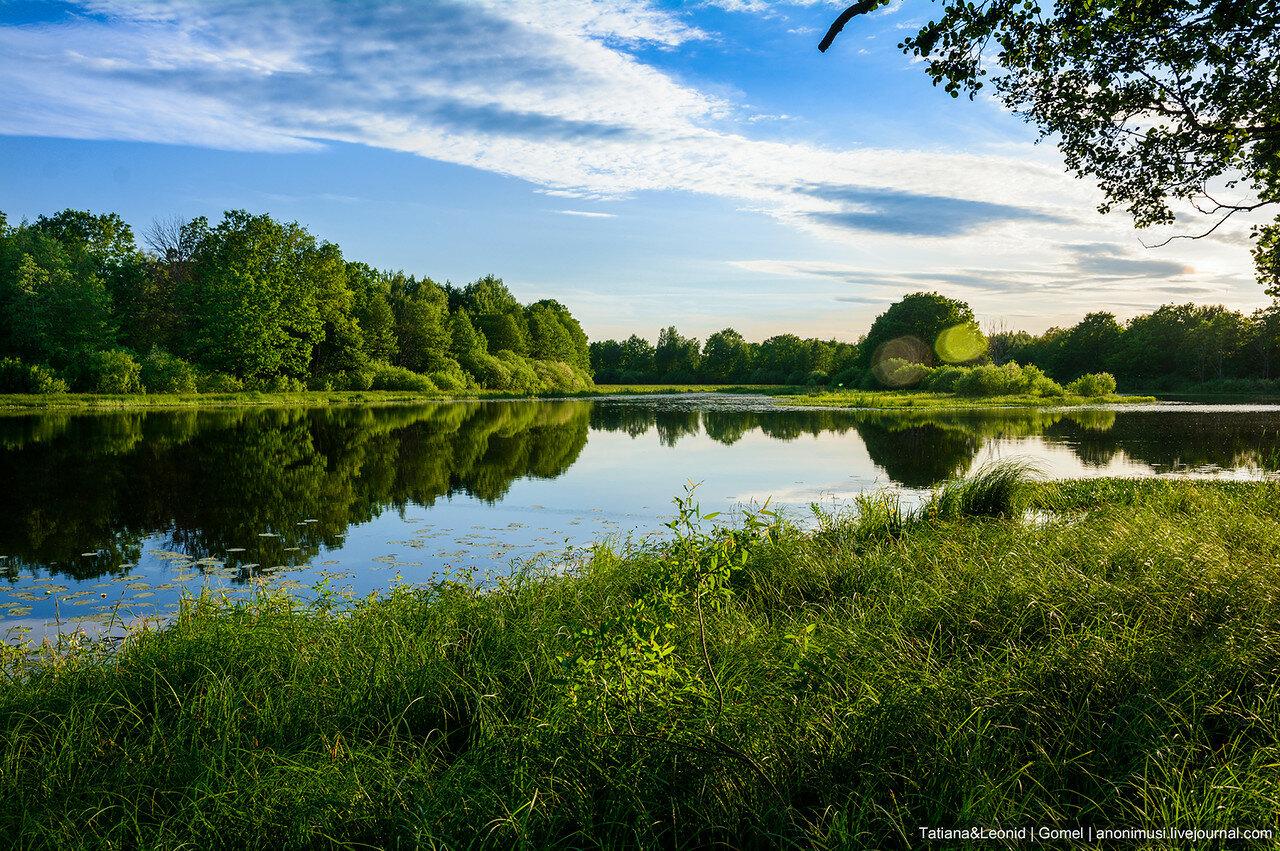 Закат на реке Сож. Беларусь