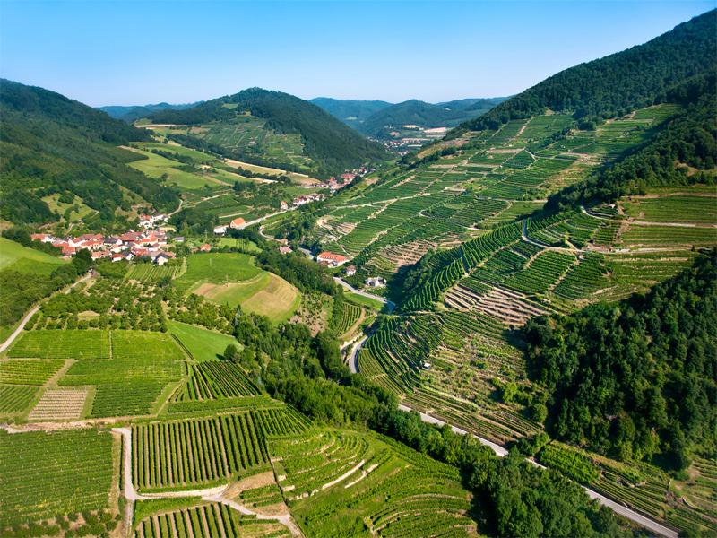 Экскурсия в Австрии с посещением долины Вахау
