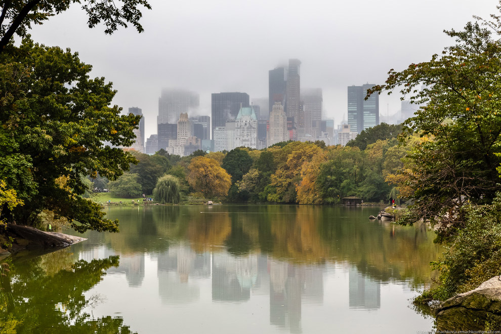 9. В самом центре города расположены «лёгкие Нью-Йорка» — Центральный парк, являющийся любимым