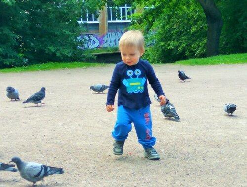 Боря и голуби 4.jpg
