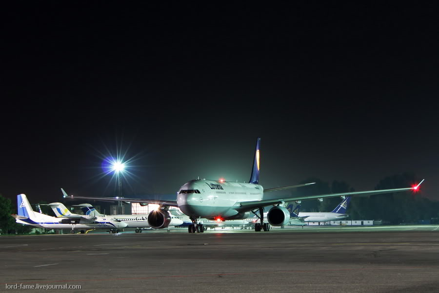 night_spotting33.JPG