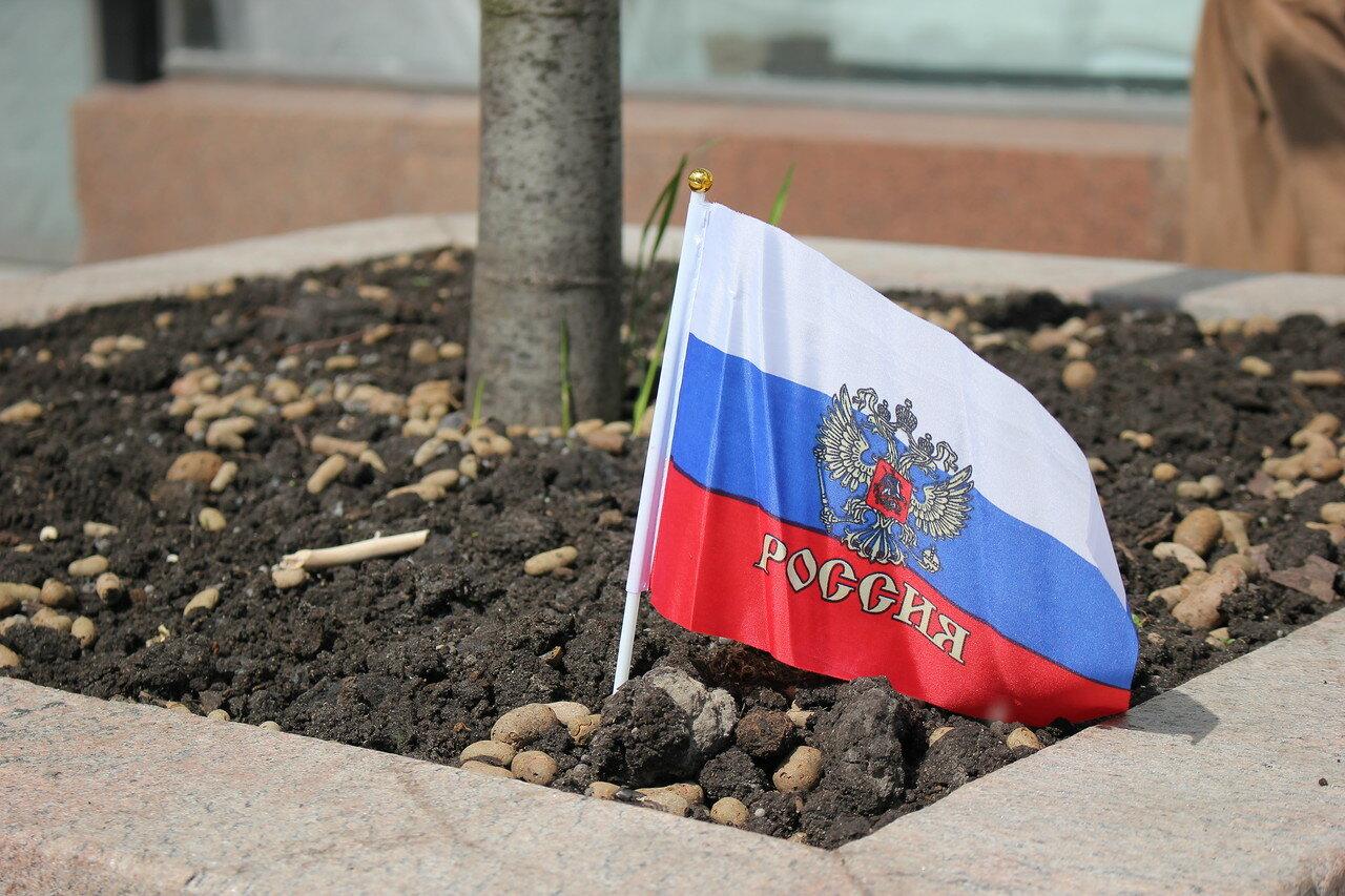 Флаг, официально запрещенный в День России