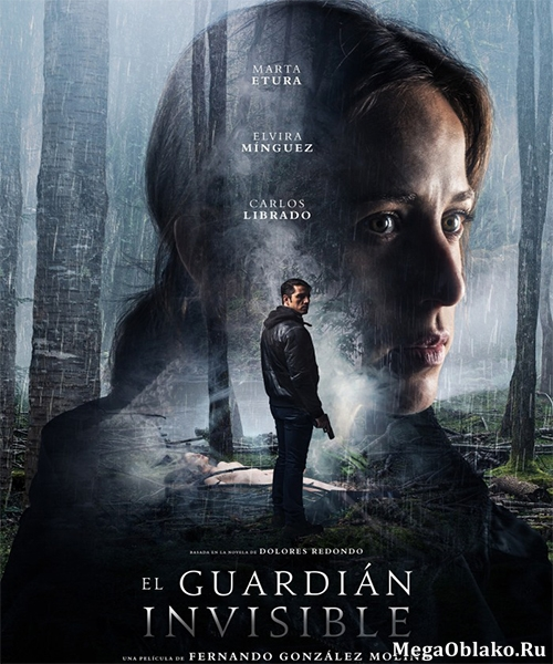 Невидимый страж / The Invisible Guardian (2017/WEBRip)