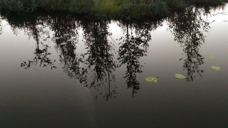 Отражения, Пчелинское озеро