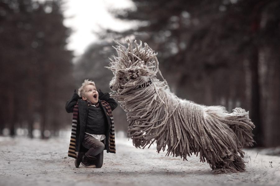 Когда твоя собака – комондор